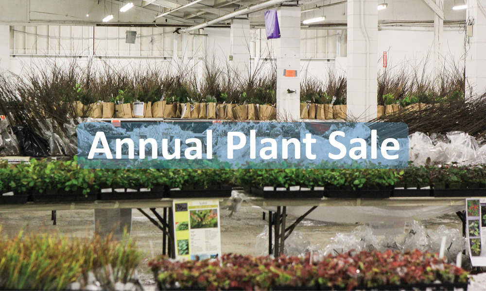 Annual Plant Sale Button