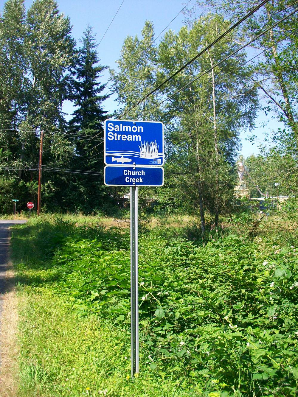 Salmon Stream sign signifying church creek as the salmon stream