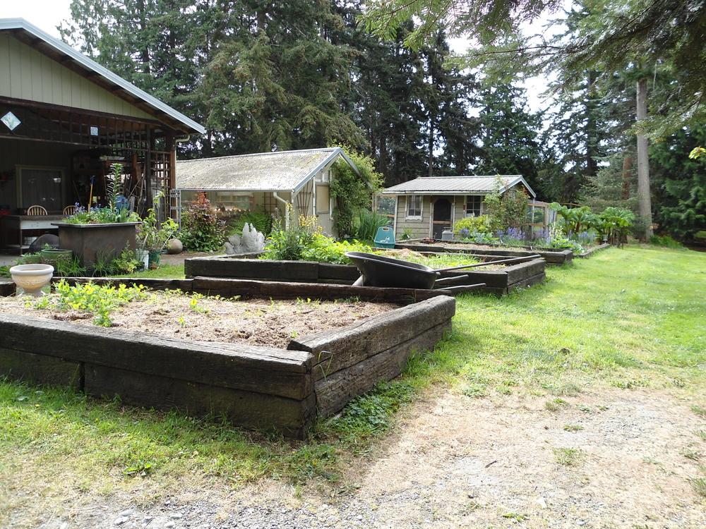 Liz Abelsen's Garden Beds