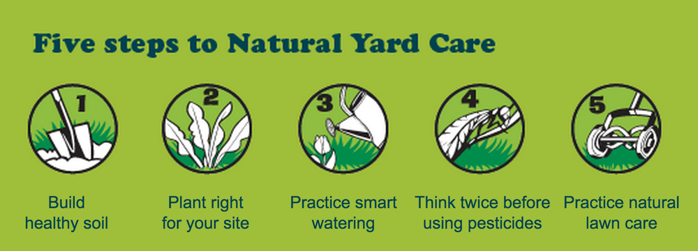 5 steps to natural yard care graphic courtesy of Puget sound Partnership