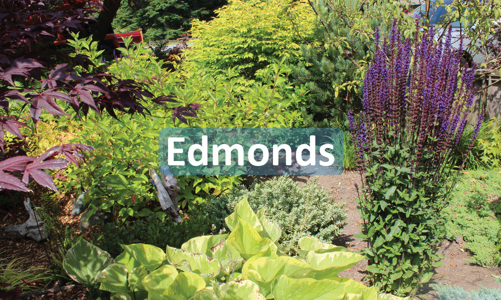 City of Edmonds Project
