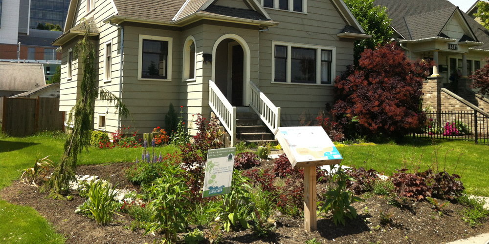 Photo of Everett Rain Garden- Pilot Project