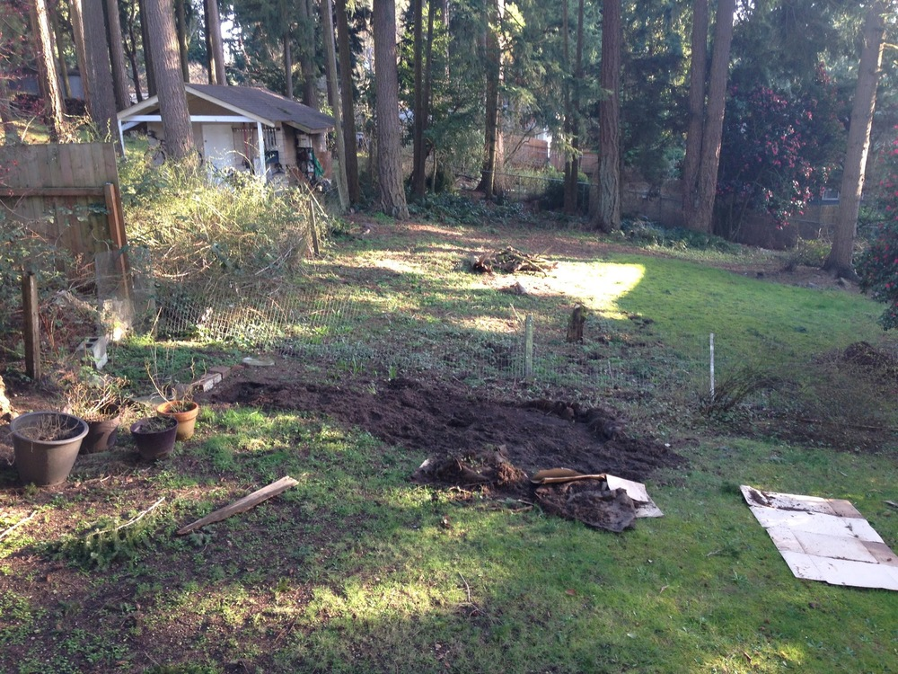 Robyn Rice lawns to lettuce.jpg