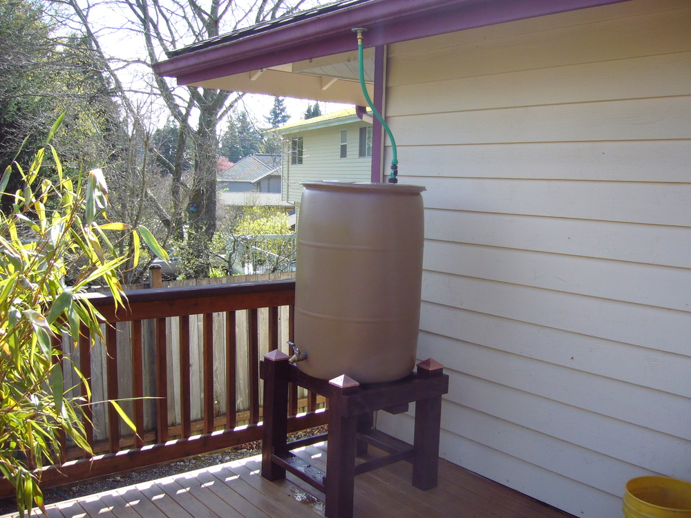 Fun and creative rain barrel owners (3).JPG