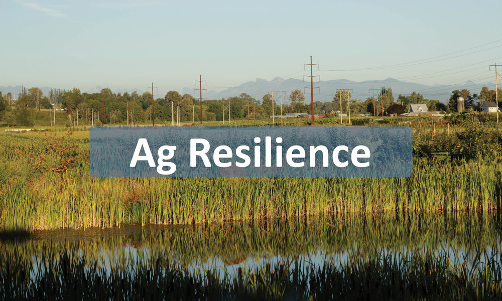 Ag resilience button