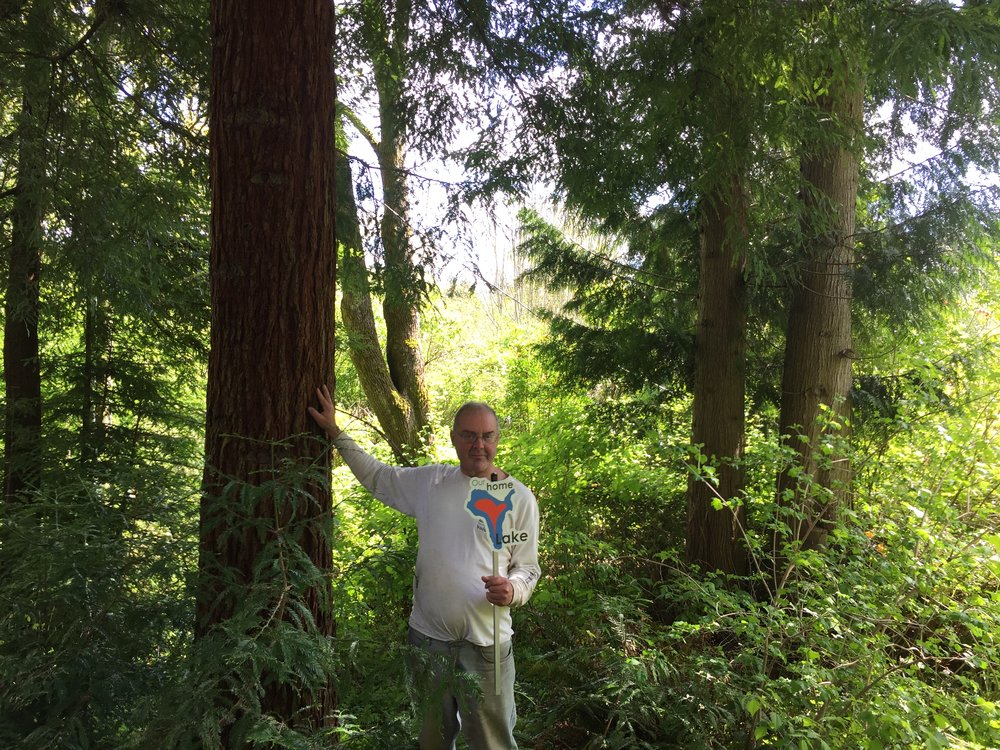 Lake Stevens Landowner, Dick Todd, poses next to a beautiful redwood tree on his property.