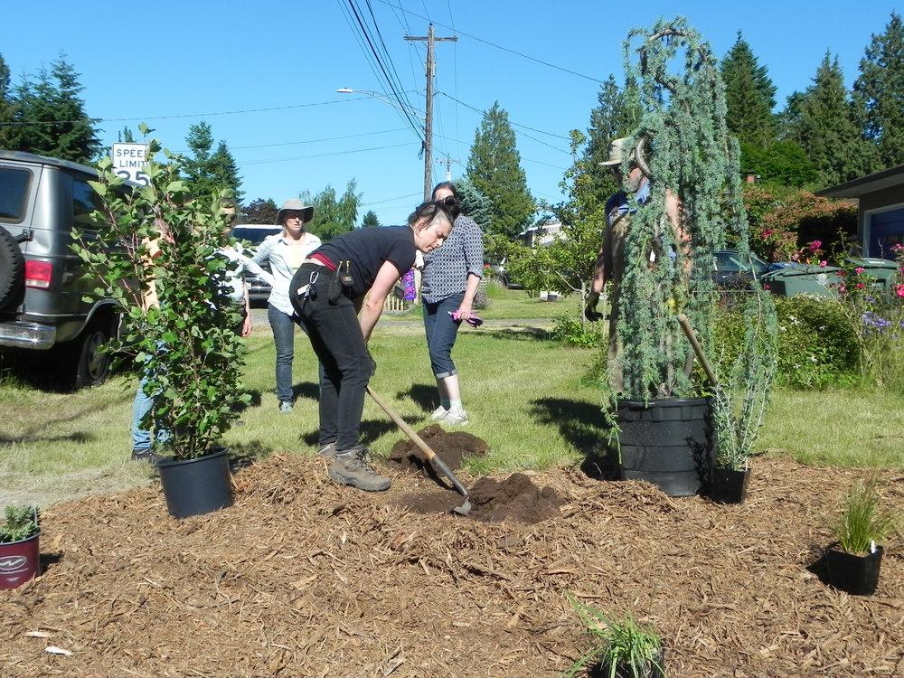 Lynnwood-WCC-Planting-0432.jpg