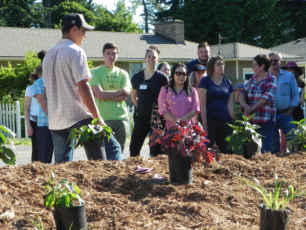 Lynnwood-WCC-Planting-0472-GROUP-Closeup.jpg