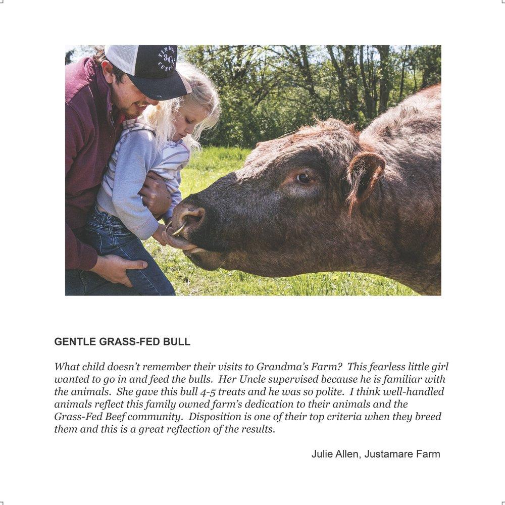 Julie bull bl.jpg