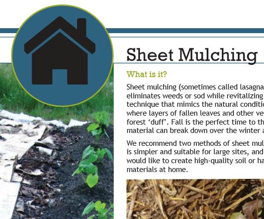 Sheet-Mulching.jpg