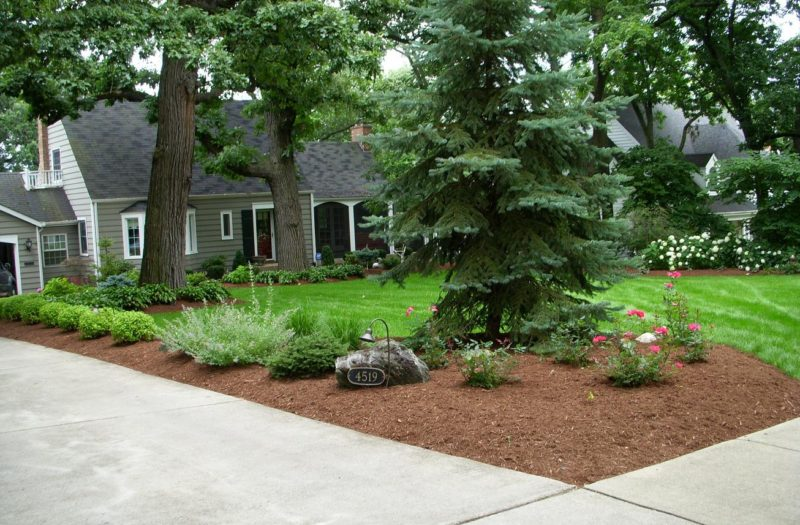 Thoughtful-Edging-front-yard-800x525.jpg