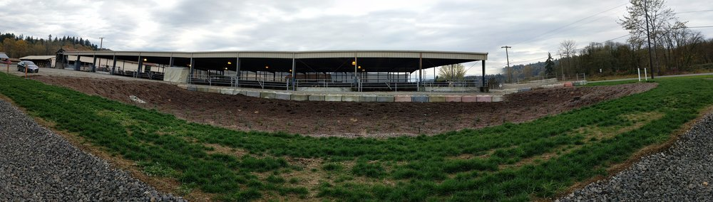 Panorama after planting