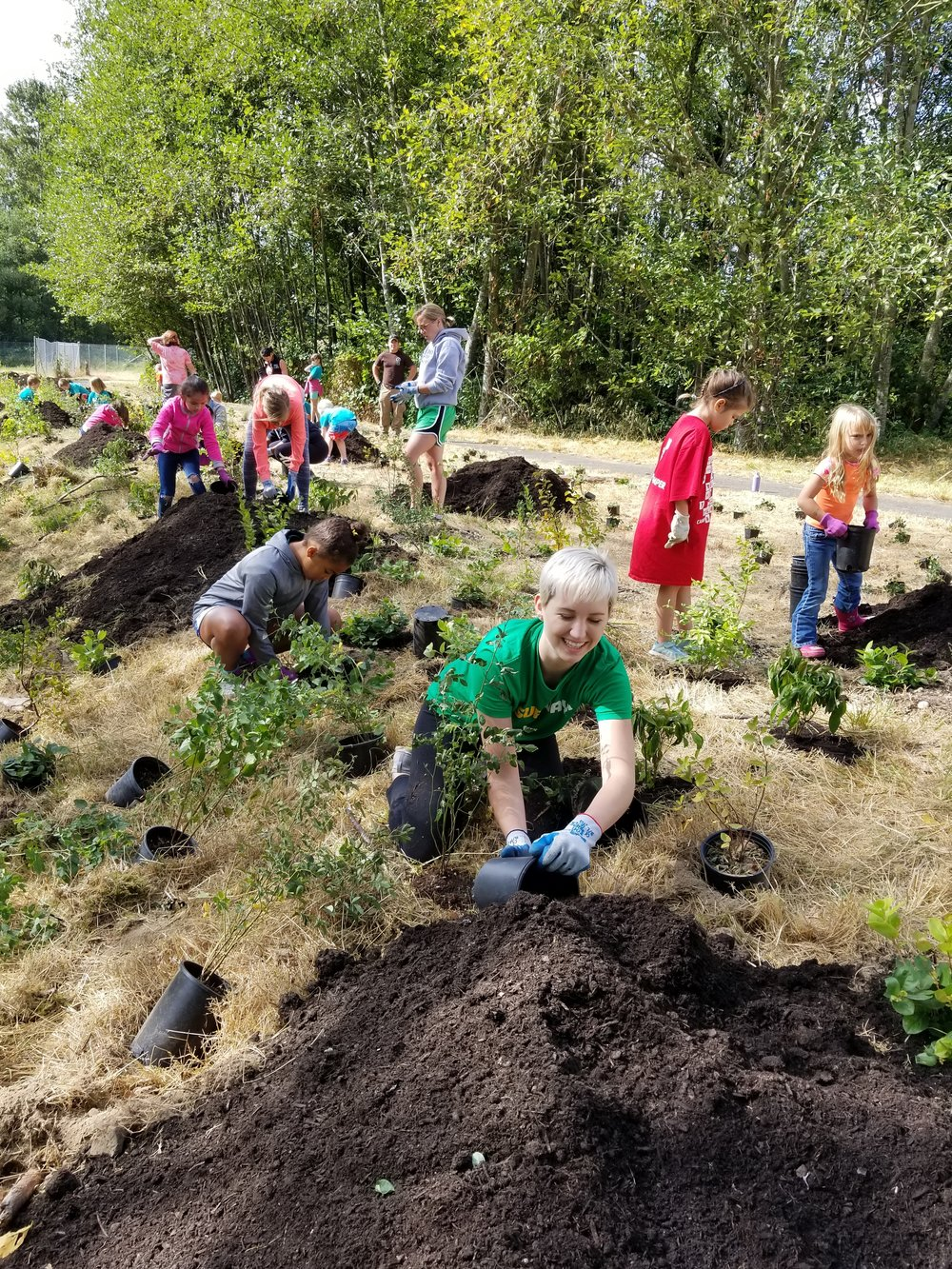 Volunteers, including 22 children from the YMCA Stanwood Summer Camp, plant some of the 1,000 plants that will beautify this stormwater pond.