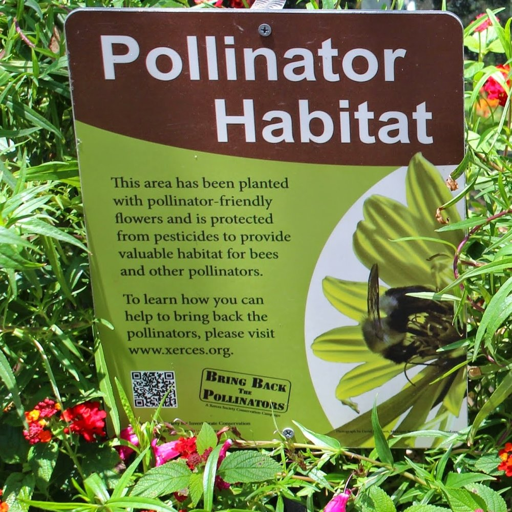 Photo of Pollinator Habitat sign