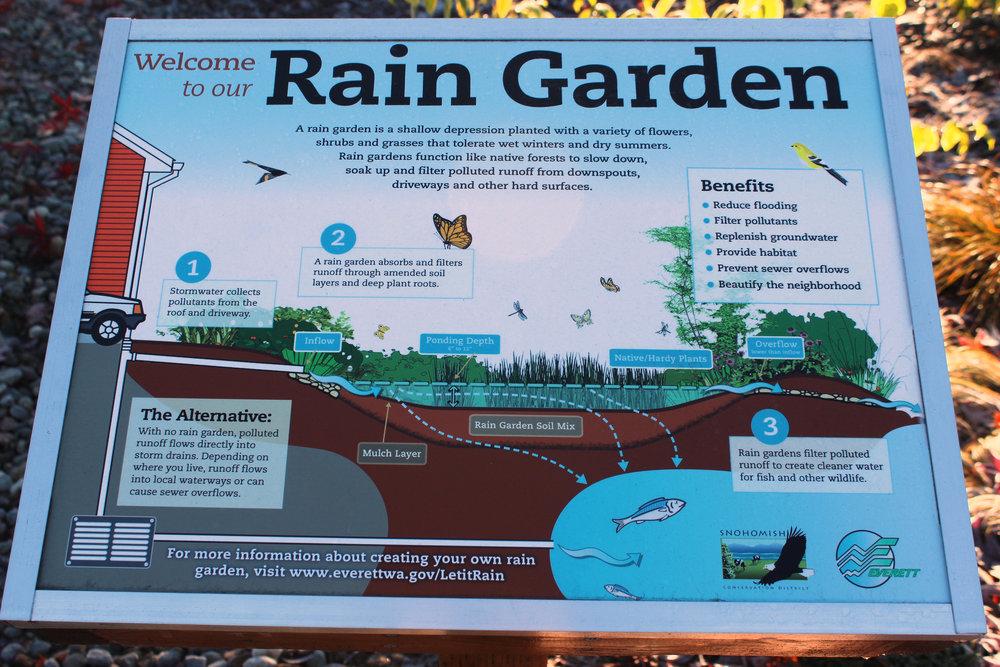 Raingarden_14.jpg