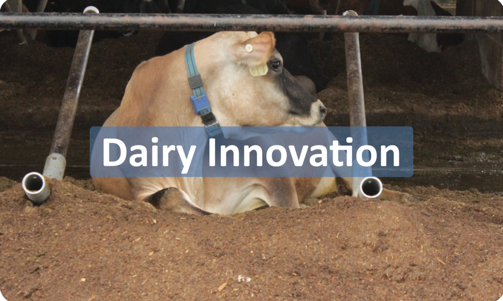 DairyInnovationButton.png