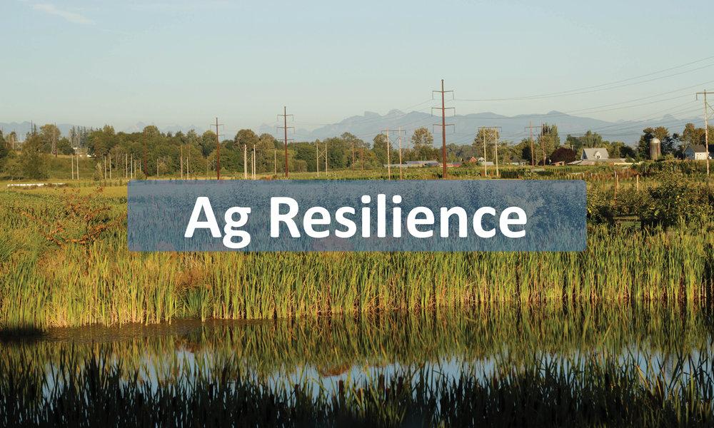 Ag Resiliencebuttons.jpg