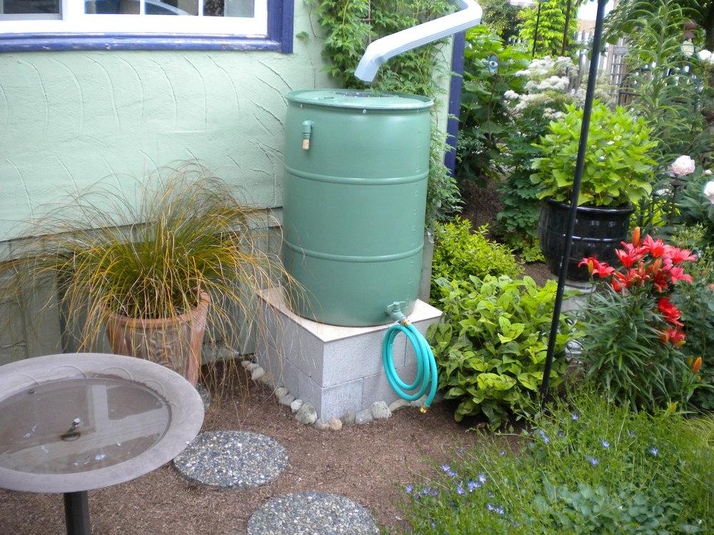 Fun And Creative Rain Barrel Owners (2) ...