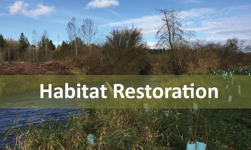 Habitat Restoration Program Button