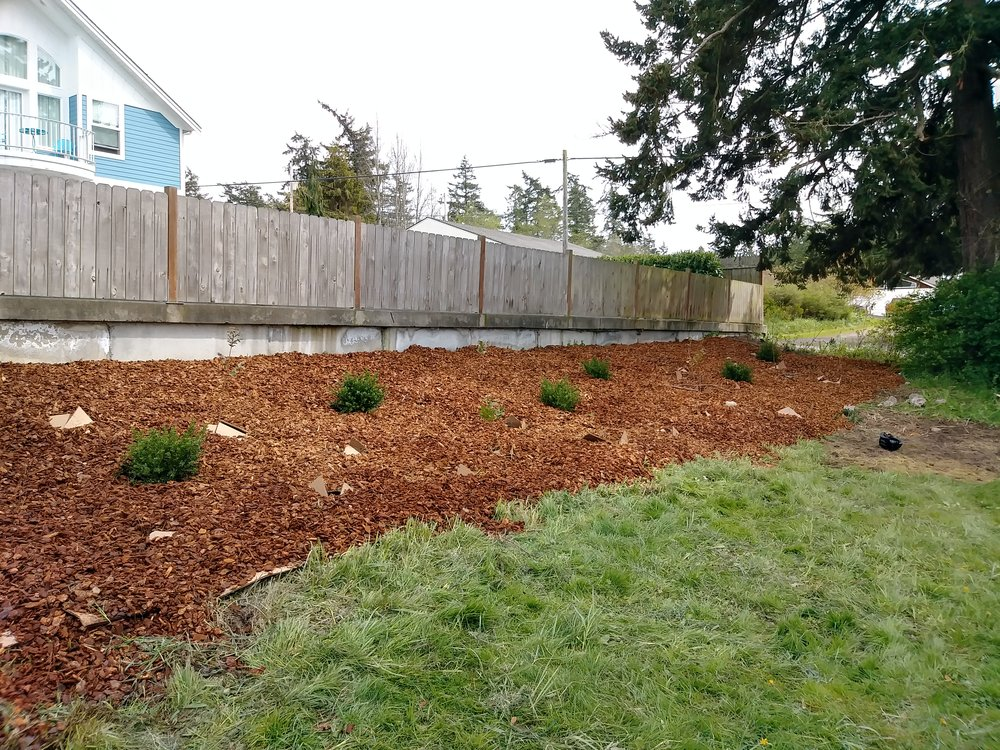 AFTER: The bed was then covered with mulch and appropriate plants to help retain water on this slope.