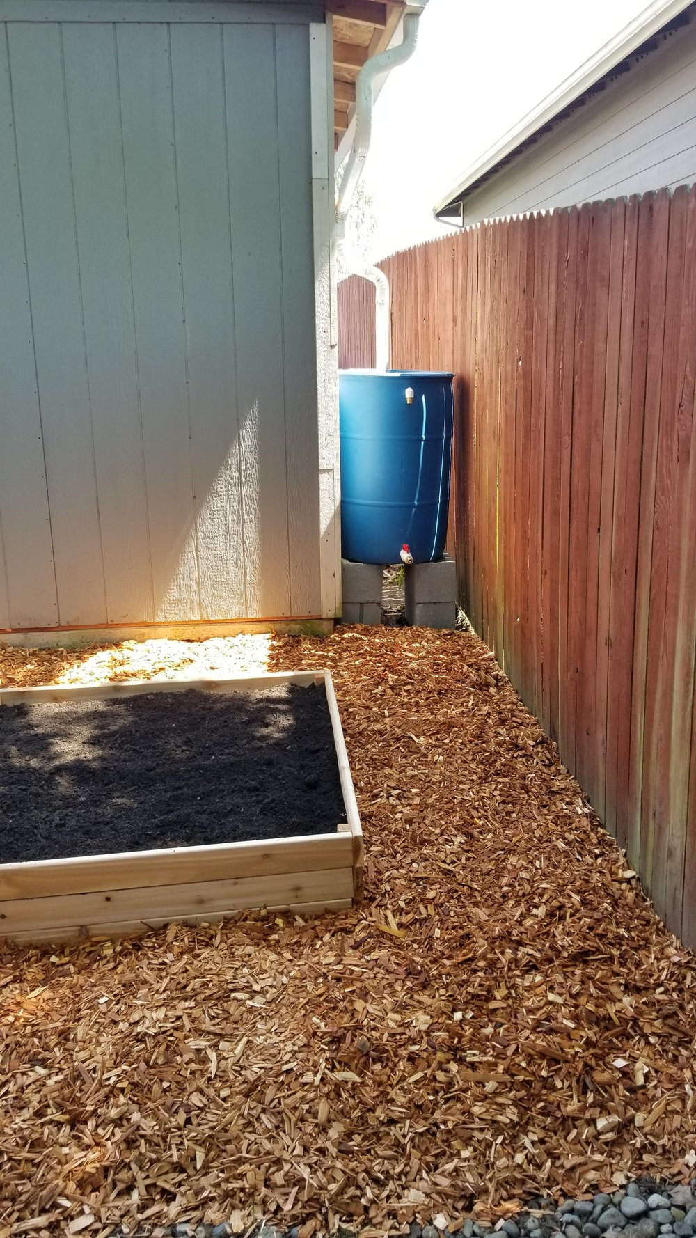 AFTER: Cedar chips are added around the bed to keep down weeds and grass, and provide a permeable surface so rainwater can infiltrate into the ground.
