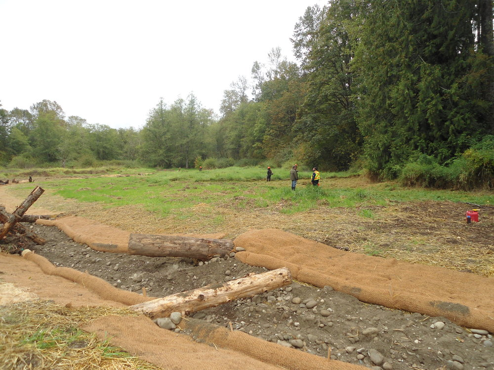 April 2016 - Ryan Williams and WCC crew work to construct the stream channel.