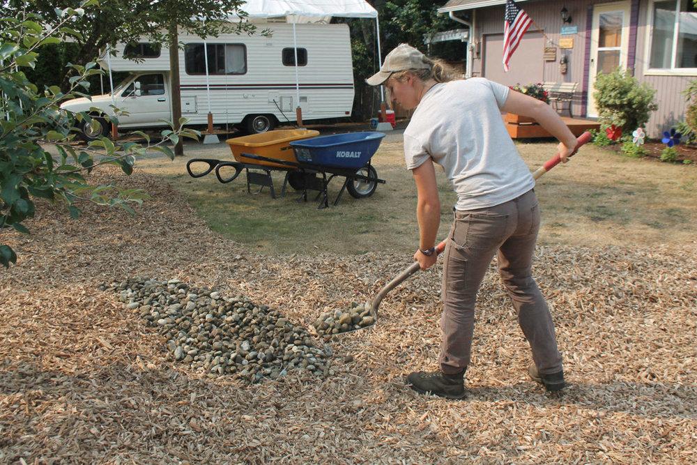 Tessa Anton puts the finishing touches on a bothell rain garden