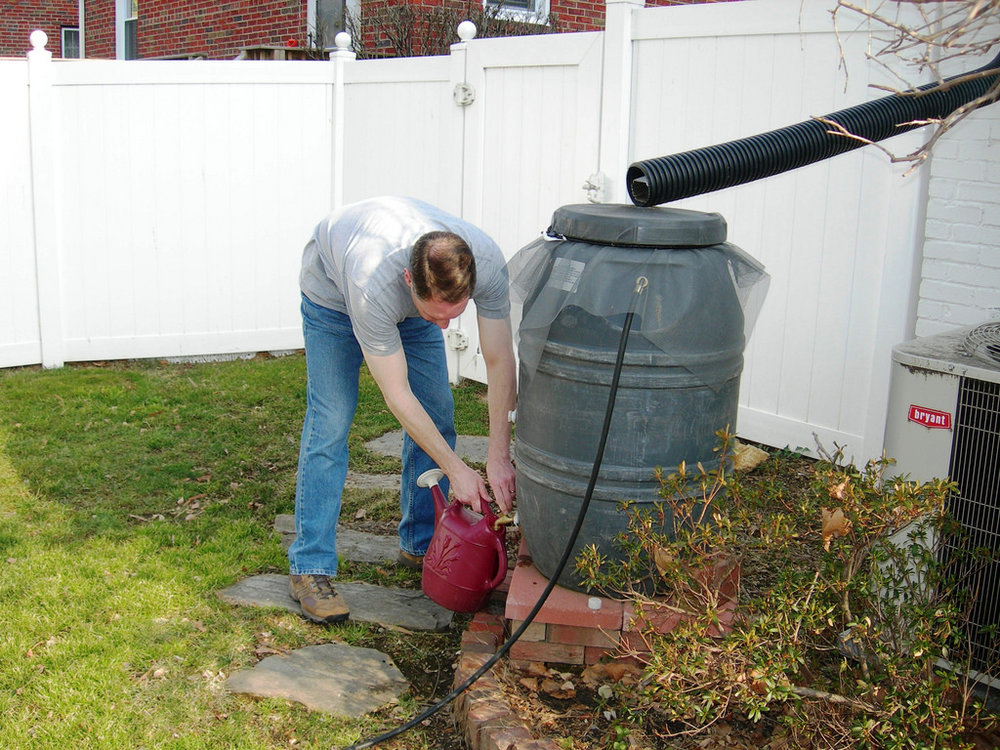 Rain Barrel in yard