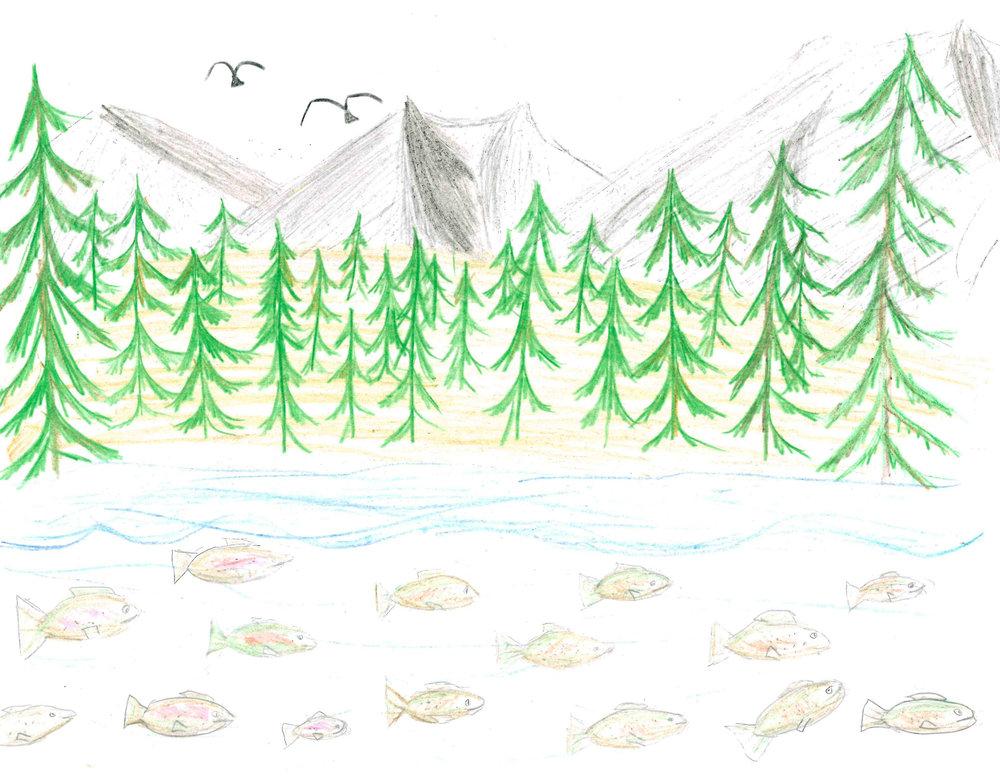 Salmon Upstream by Sofia Scicchitano - 2nd Place - Grades 6-8