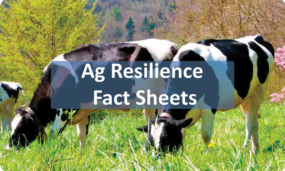 Click to view our new Agriculture Resilience Fact Sheets