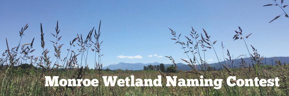 Monroe Wetland Naming Contest