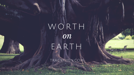 worth-on-earth