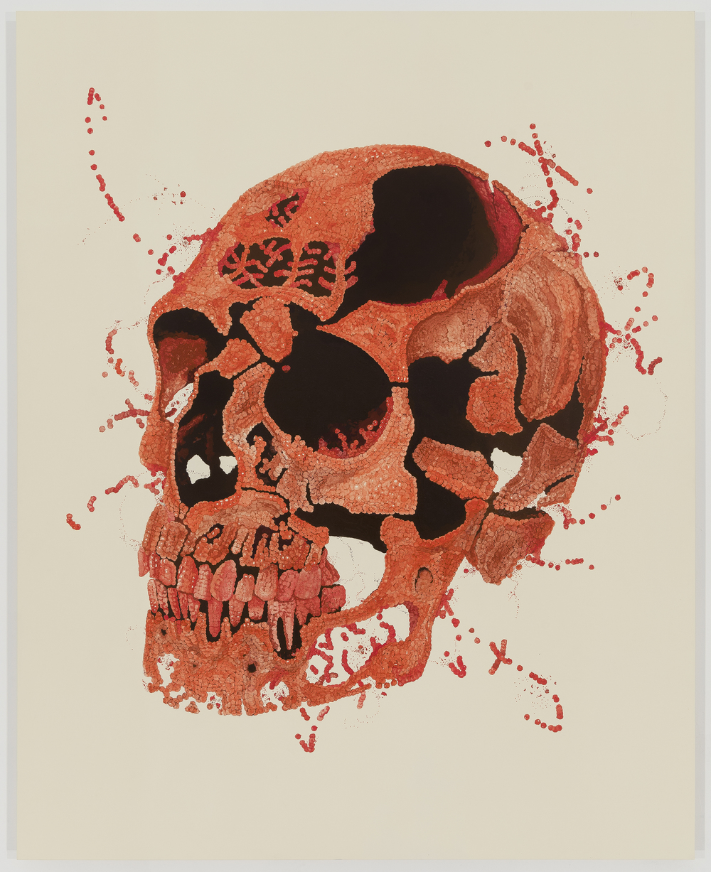 IMPERMANENT (THE POMEGRANATE SKULL)  2014 INK AND ACRYLIC ON PANEL 60 X 48 INCHES