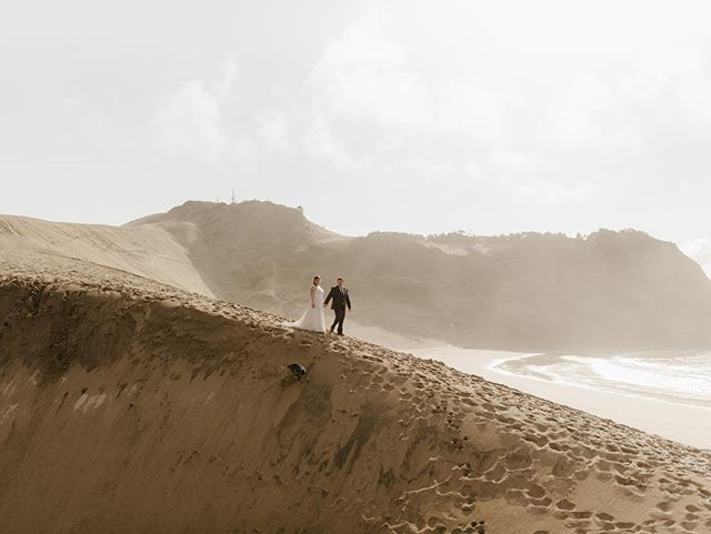 Another one from this weekend's coastal elopement! If you look real close you can see Indigo the dog having the time of her life running up and down the dune. 🐕 Incase it wasn't obvious, dogs always welcome! Highlights from this wedding are up in my stories for a few more hours, check it out for more cute puppy photos!