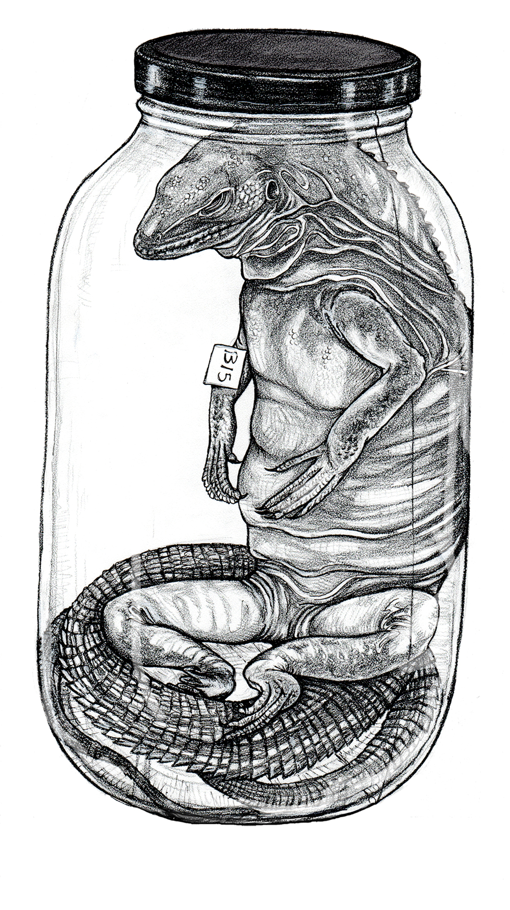 Pickled Godzilla