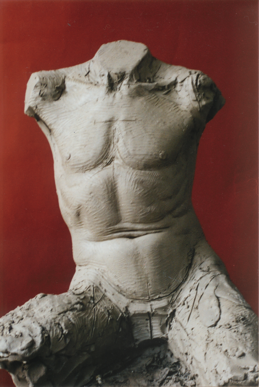 thanasi-torso-study-gianni-sculpture.png