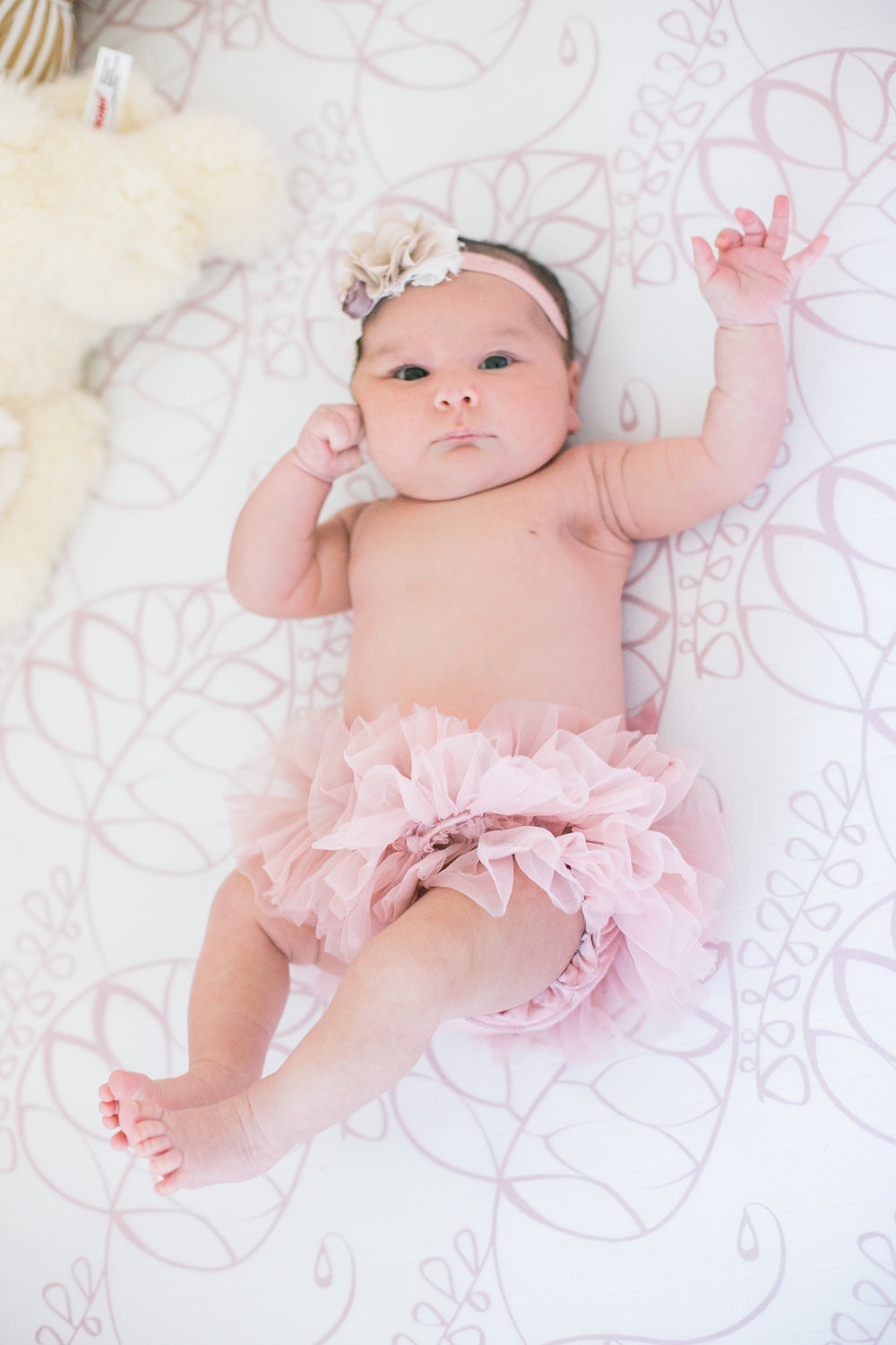 Dougher Newborn Session 2017-3.jpg