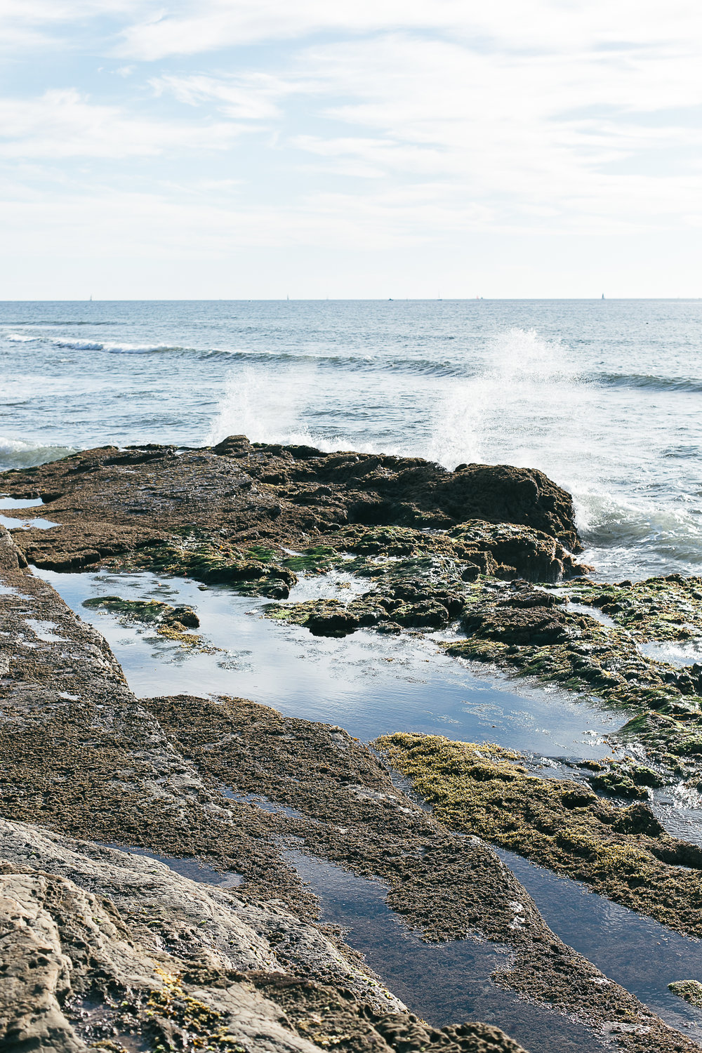 Amanda and Josh's engagement session Cabrillo National Monument and tide pools-5.jpg
