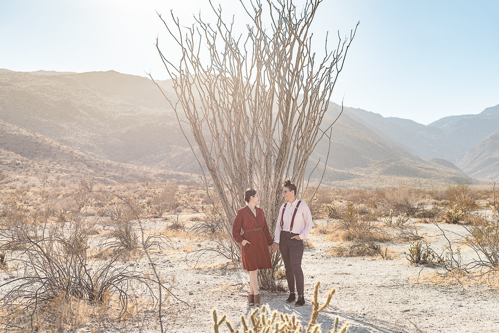 Molly and Ashley's Anza Borrego and Julian Engagement Session-2.jpg