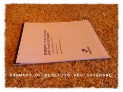 Employer Provided Health Insurance summary of benefits and coverage
