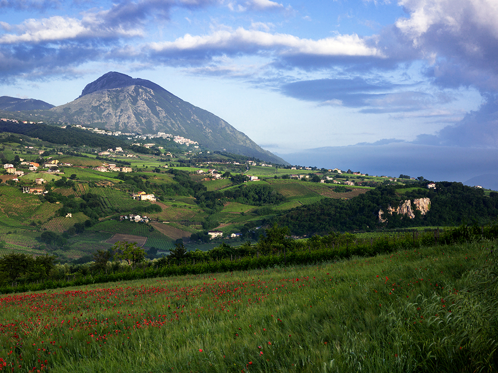The Mountain , Benevento, Italy, 2015