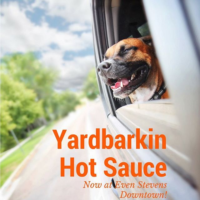 Get your Yardbarkin on at @evenstevenssandwiches downtown location in @slc now! #hotsauce #animalrescue #DoGood #801 #charity #community #buylocal #utahsown