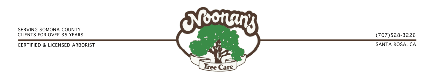 Noonan's Tree Care
