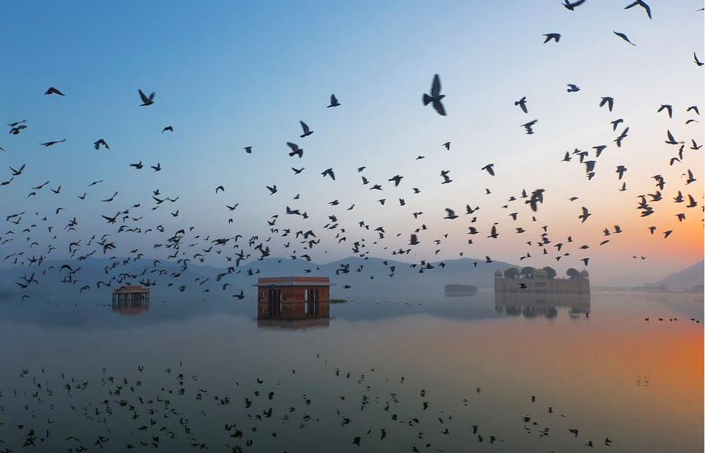 PHOTOGRAPH AND CAPTION BY RAVIKANTH KURMA