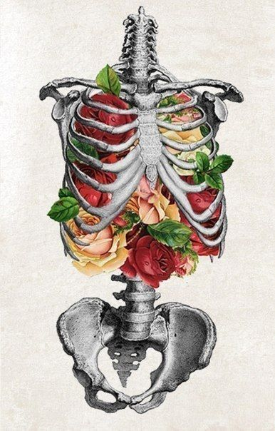 a18239f0932f361cdbbbde60b95bb991--skeleton-flower-rib-cage.jpg