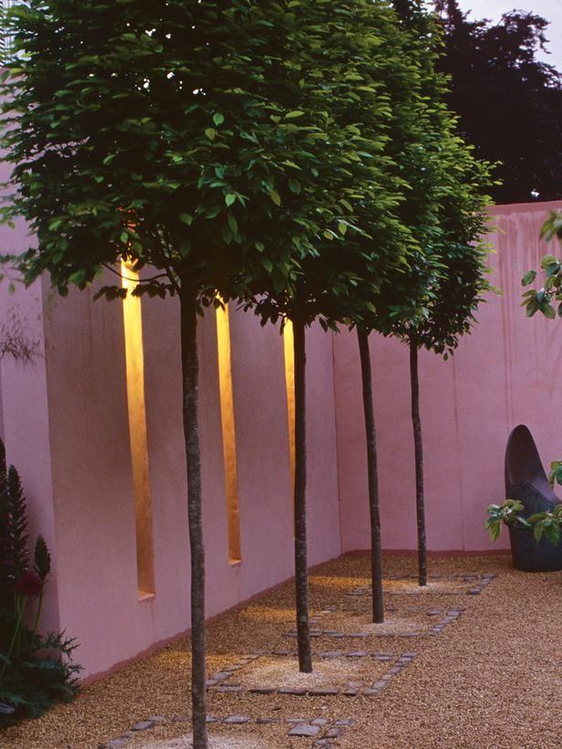hgtv urban gardening