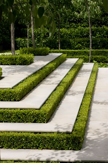 stairs and hedge.jpg