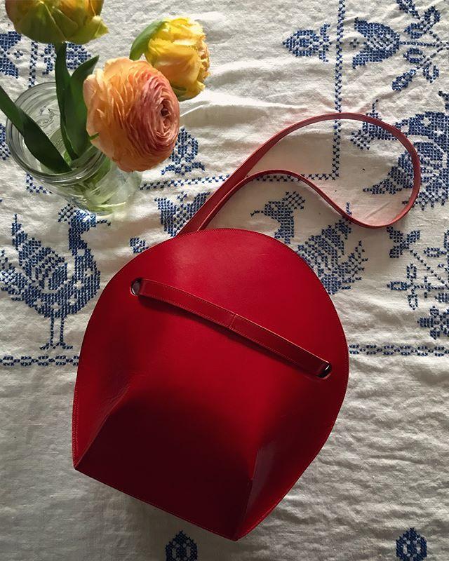 Red & Rose 🌹