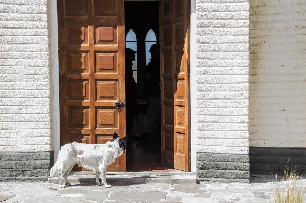 ITALY 2007 -01 -918-1.jpg