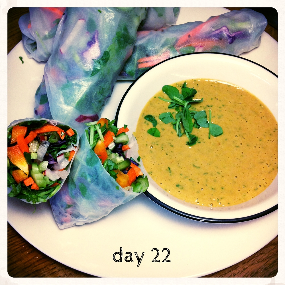 Salad rolls, with Shiratake and Peanut Dressing from Whitewater Cooks